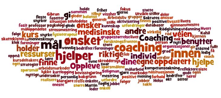 Amicum Helse Coaching
